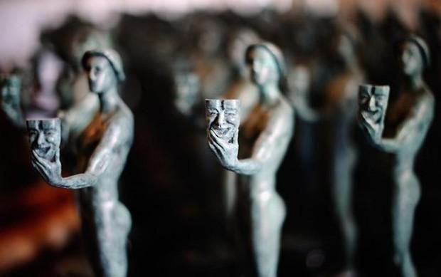 Так выглядит премия гильдии киноактёров США