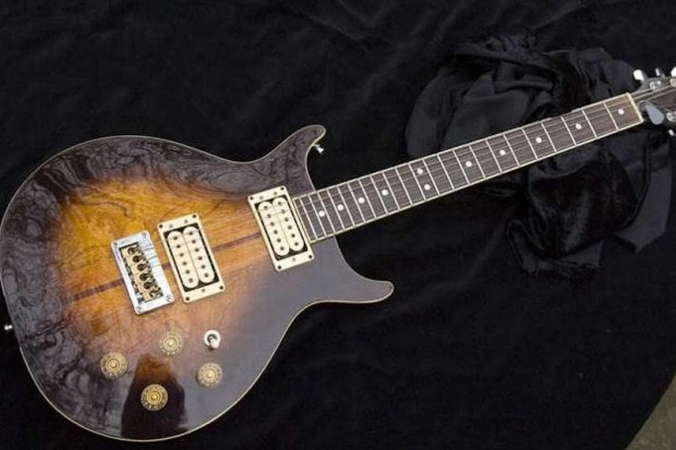Washburn 22 series Hawk