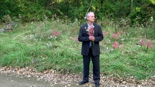 Билл мюррей в фильме Сломанные цветы