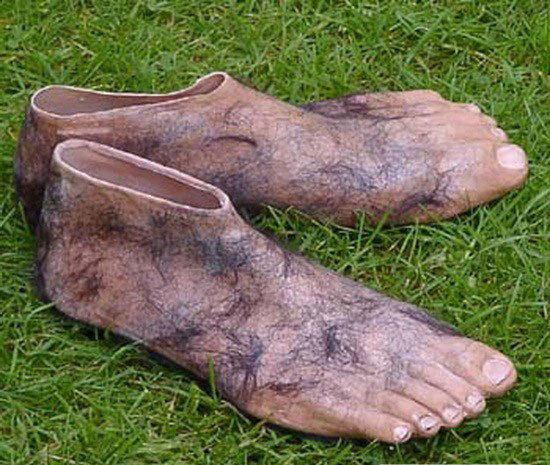 Ноги хоббитов