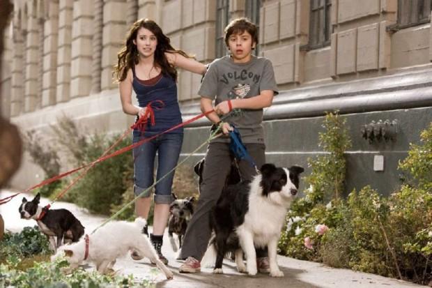 Кадр из фильма Отель для собак