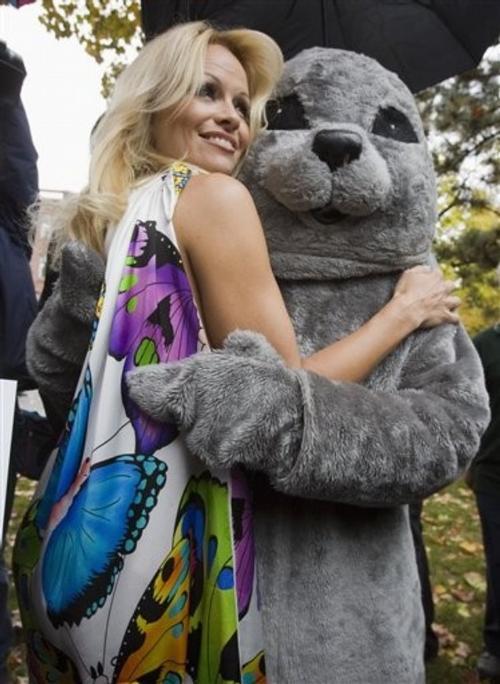 Раньше Памела Андерсон защищала тюленей