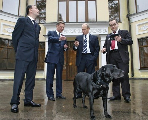 C какими животными встречался Путин