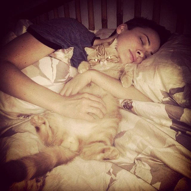 Даша Астафьева показала своего кота